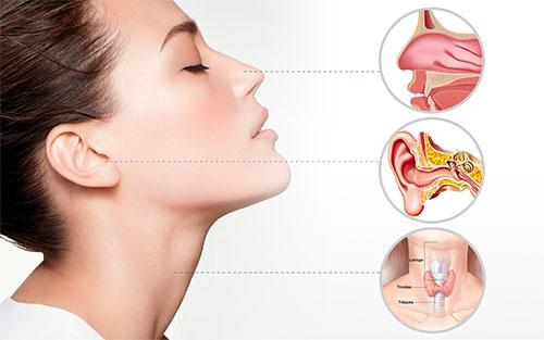Hiposmia: cuando el olfato avisa