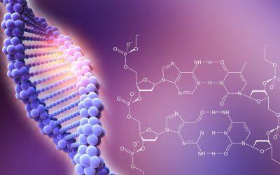 Enfermedades del ADN causadas por mutaciones del ADN